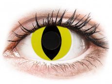 CRAZY LENS - Cat Eye Yellow - nedioptrické jednodenní (2 čočky)