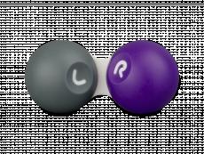 Pouzdro na čočky SG šedo-fialové